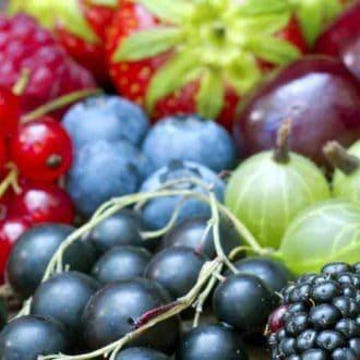 משלוחי פירות לחורף חם
